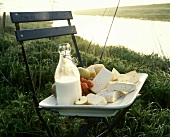 Various raw milk cheeses and milk bottle on chair in meadow