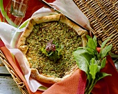 Herb soft cheese quiche with sorrel in picnic basket