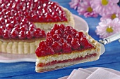 Raspberry gateau, piece cut, one piece on cake slice