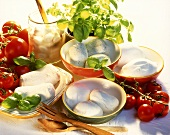 Still life with several types of mozzarella, tomatoes & basil