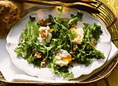 Dandelion salad with poached eggs, nuts and bacon