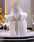 Dekorativ gefaltete weisse Stoffserviette auf einem Teller