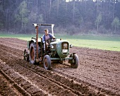 Farmer on tractor preparing field for sowing potatoes
