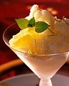 Lemon Sorbet with Mint Garnish
