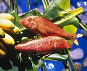Two red snappers on banana leaves, olives & bananas beside