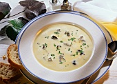 Cream Soup in White Bowl with Mushrooms