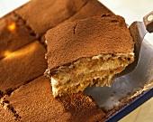 Tiramisù (layered mascarpone dessert), Latium, Italy