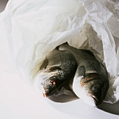 Two Trout Wrapped in Paper