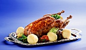 Roast duck with dumplings and salad on silver tray