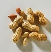 Whole peanuts & peanut kernels, peeled and unpeeled