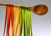 Two Kinds of Ribbon Pasta