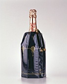 A bottle of Perrier Jouet champagne in cool bag