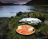 Fresh & smoked salmon on the shore of Loch Fyne, Scotland