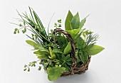 Assorted herbs in small wicker basket