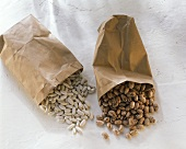 White beans & quail's egg beans falling out of a paper bag