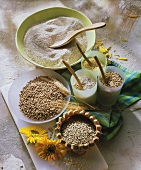 Various types of grain & wholemeal flour in bowls