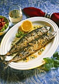 Garlic mackerel on white fish plate, decoration: wine glass