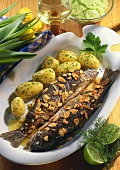 Trout, miller's wife style with parsley potatoes