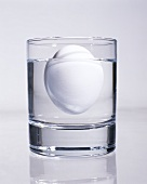 Old egg (no longer fresh) floating in glass of water