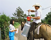 Spanish milkman on a donkey