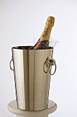 Champagne bottle (Moet & Chandon) in champagne bucket
