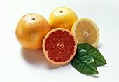 Rosa und gelbe Grapefruit, je eine ganze & eine halbe Frucht