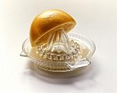 Yellow grapefruit half on lemon squeezer