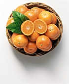 Tangerines in a Basket with Leaves