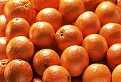 Oranges (Full Frame)