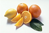 Lemon, oranges, orange halves, orange wedges and leaves