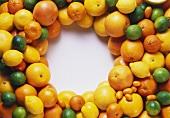 Citrus Fruit Still Life in a Wreath
