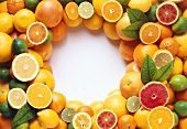 Lots of citrus fruits arranged around edge of picture