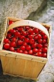 Cherries in a chip basket