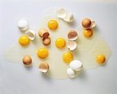 Aufgeschlagene braune & weisse Eier