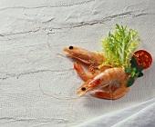 Two prawns with salad garnish on white background
