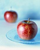 Zwei rote Äpfel, einer im Vordergrund auf blauem Teller