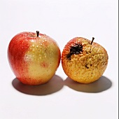 One fresh and one rotten apple