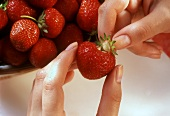 Hulling strawberries: pulling out the calyx by hand