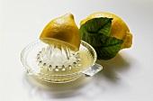Half a lemon on lemon squeezer in front of whole lemon