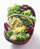 Various lettuces in wicker basket
