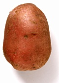 A Desiree potato (semi-floury)