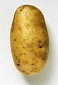 A Sieglinde potato