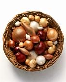 Various varieties of onions in basket