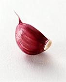 Knoblauchzehe mit roter Schale