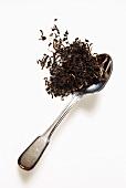 Loser schwarzer Tee auf silbernem Teelöffel