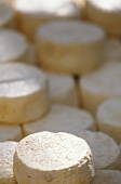 Fresh Goat Cheese