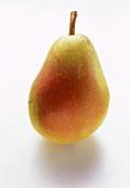Eine Birne, Sorte Santamaria