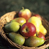 Apples and pears in a basket in the open air
