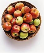 Verschiedene Apfelsorten in einem Korb