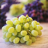 Green grapes on marble platter in front of mixed grapes